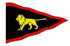 RNYC logo