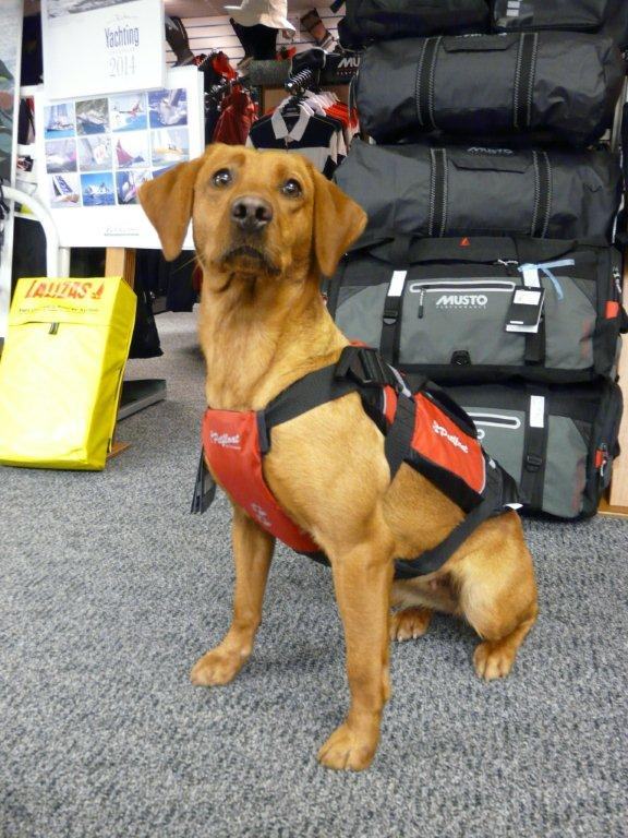 Crewsaver petfloat dog lifejacket - www.marinechandlery.com